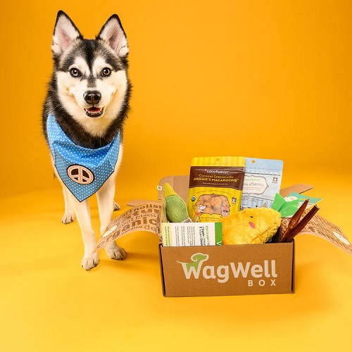 Wag Well Dog Subscription Box